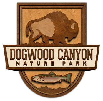 Dogwood Canyon Nature Park logo graphic with bison and fish icons